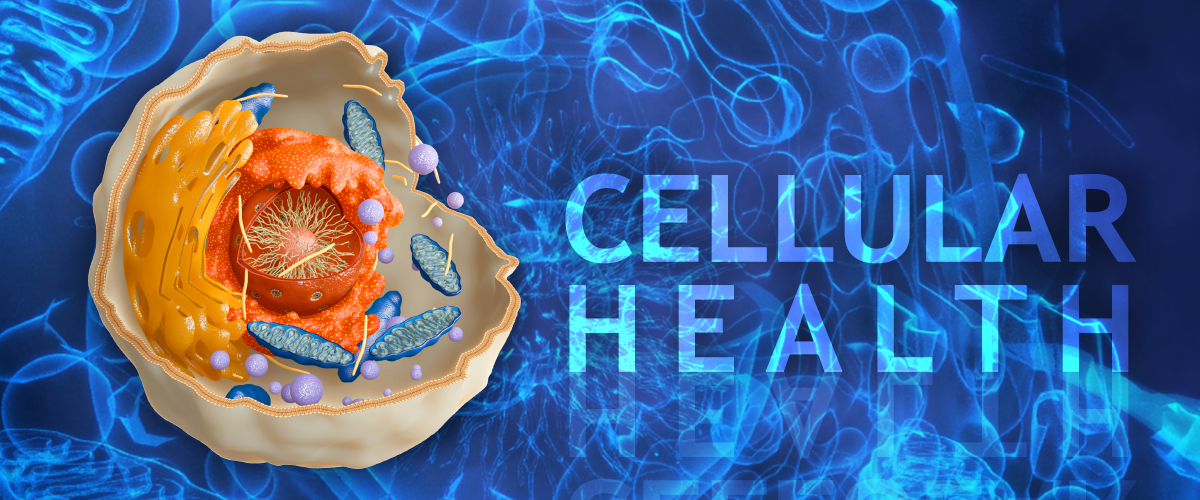 cell-health.png (1200×500)