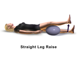Knee Pain Exercise