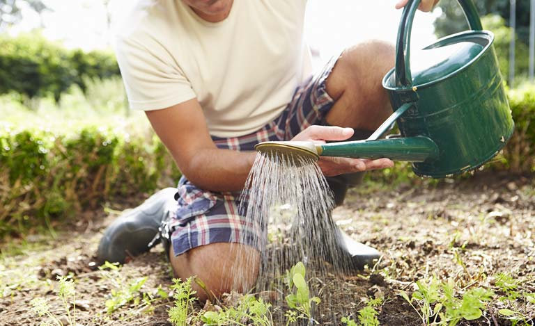 6 Tips On How to Garden with Back Pain